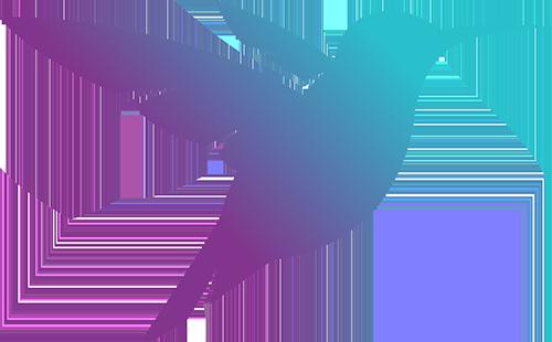 The Hummingbird Project NI